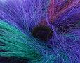 Pluizebol gekleurd
